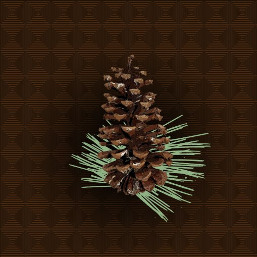 Detailed render of a long leaf cone.